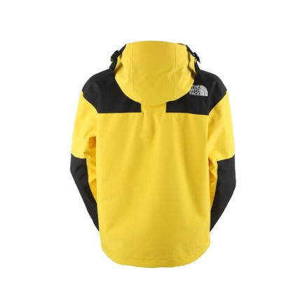 THE NORTH FACE ジャケットその他 【THE NORTH FACE】M'S 1990 GTX MOUNTAIN JACKET(15)