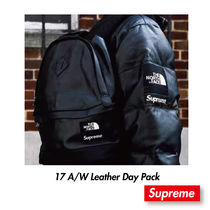 Supreme x The North Face Leather Day Pack