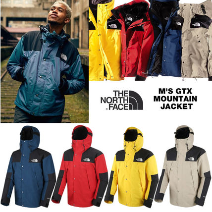 THE NORTH FACE☆M'S GTX MOUNTAIN JACKET☆