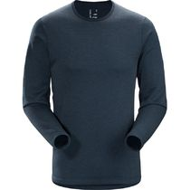 Arcteryx Dallen Fleece Pullover - Mens