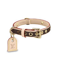 *Louis Vuitton*ルイビトン首輪 BAXTER PM DOG COLLAR