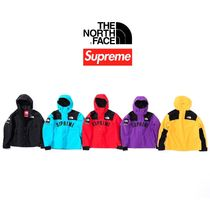 SS19 Supreme The North Face Arc Logo Mountain Parka マウンパ