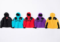 5 WEEK Supreme SS 19 The North Face Arc Logo Mountain Parka
