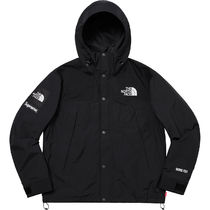 Supreme × The North Face Arc Logo Mountain Parka Black 19SS