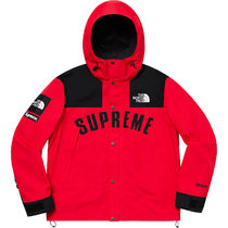 Supreme × The North Face Arc Logo Mountain Parka Red 19SS