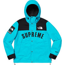Supreme × The North Face Arc Logo Mountain Parka Teal 19SS