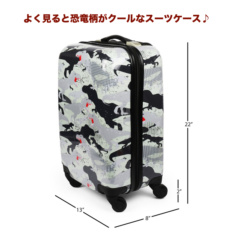 Carry On Luggage Travel Bags