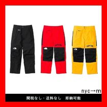 即納国内発送 supreme the north face arc logo mountain pant