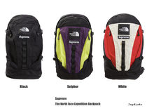 【Supreme】The North Face Expedition Backpack