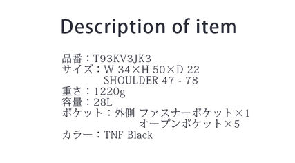 THE NORTH FACE バックパック・リュック THE NORTH FACE『Borealis』T93KV3JK3 バックパック(3)