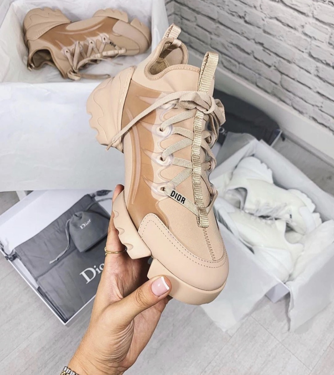 Christian Dior 2019 SS Low-Top Sneakers