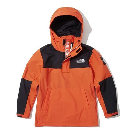 THE NORTH FACE ジャケットその他 [THE NORTH FACE] ★NEW ARRIVAL 19'W ★ DALTON ANORAK(18)