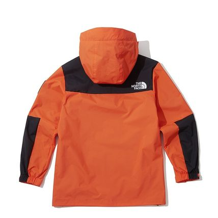 THE NORTH FACE ジャケットその他 [THE NORTH FACE] ★NEW ARRIVAL 19'W ★ DALTON ANORAK(20)
