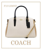 【即発】COACH ◆NTRL COLORBLOCK MINI SAGE  2way◆ F73712