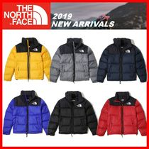 人気【THE NORTH FACE】★ M'S 1996 RETRO NUPTSE DOWN JKT★6色