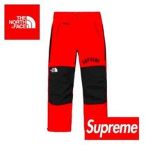SS19 Week5 Supreme / The North Face Arc Logo Mountain Pant