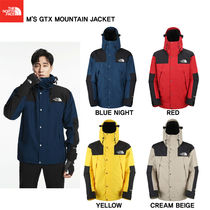 【THE NORTH FACE】M'S GTX MOUNTAIN JACKET