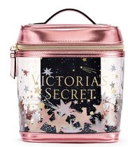 VICTORIA'S SECRET CELESTIAL SHIMMER SMALL TRAIN CASE