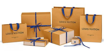 Louis Vuitton ネックレス・チョーカー すぐ届くLouis Vuitton ルイヴィトン エッセンシャルVネックレス(11)