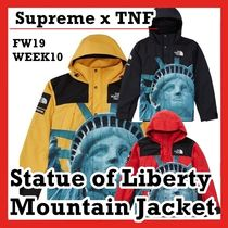 Supreme TNF The North Face Statue of Liberty Mountain Jacket