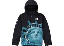 TNF The North Face Statue of Liberty Mountain Jacket