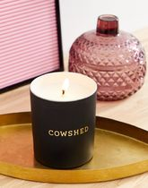Cowshed Showed Winter Candle