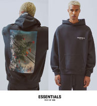FOG - Fear Of God Essentials Photo Series Pullover Hoodie