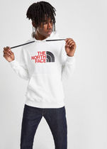The North Face ☆日本未入荷The North Face Large Logo Hoodie