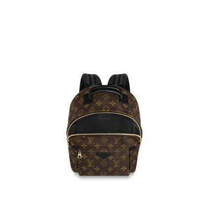 Louis Vuitton バックパック・リュック LOUIS VUITTON M44871 パームスプリングス バックパック PM(3)