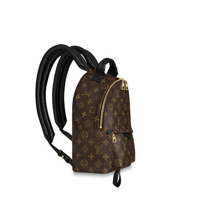 Louis Vuitton バックパック・リュック LOUIS VUITTON M44871 パームスプリングス バックパック PM(4)