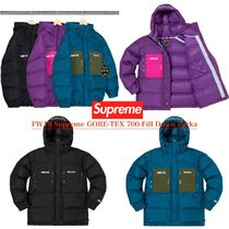 FW19 Supreme GORE-TEX 700-Fill Down Parka - ゴアテックス