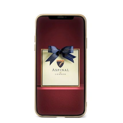 Aspinal of London スマホケース・テックアクセサリー 【Aspinal of London】Lion iPhone 11 Pro Case(3)