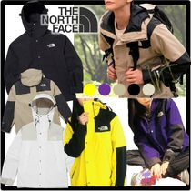★送料・関税込★THE NORTH FACE★ECO GTX MOUNTAIN JACKET