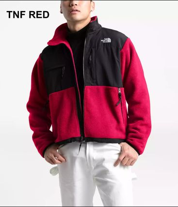 THE NORTH FACE ジャケットその他 USA THE NORTH FACE★MENS '95 RETRO DENALI デナリ ジャケット(9)
