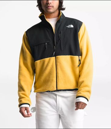 THE NORTH FACE ジャケットその他 USA THE NORTH FACE★MENS '95 RETRO DENALI デナリ ジャケット(12)