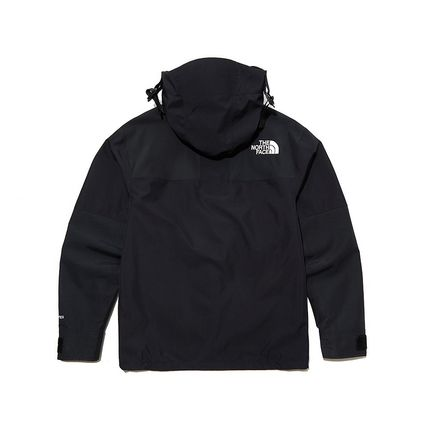 THE NORTH FACE ジャケットその他 THE NORTH FACE★日本未入荷 ジャケットECO GTX MOUNTAIN JACKET(2)