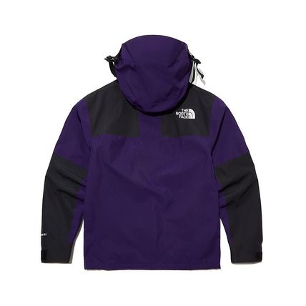THE NORTH FACE ジャケットその他 THE NORTH FACE★日本未入荷 ジャケットECO GTX MOUNTAIN JACKET(11)