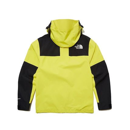 THE NORTH FACE ジャケットその他 THE NORTH FACE★日本未入荷 ジャケットECO GTX MOUNTAIN JACKET(13)