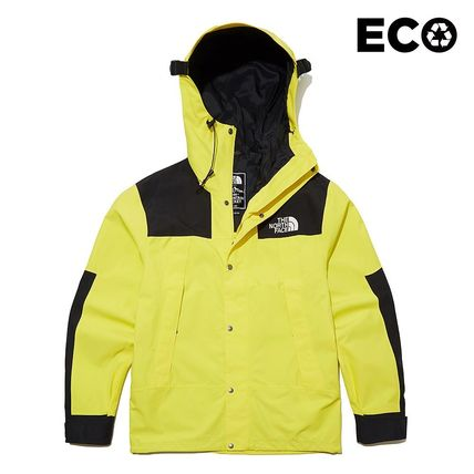 THE NORTH FACE ジャケットその他 THE NORTH FACE★日本未入荷 ジャケットECO GTX MOUNTAIN JACKET(14)