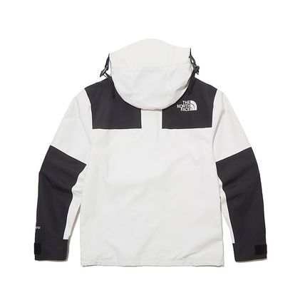 THE NORTH FACE ジャケットその他 THE NORTH FACE★日本未入荷 ジャケットECO GTX MOUNTAIN JACKET(19)