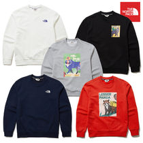 THE NORTH FACE ザノースフェイス GO-GREEN SWEATSHIRTS