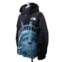 Supreme x North Face Statue of Liberty Mountain Jacket