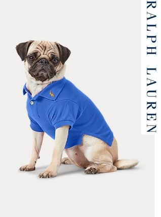 Ralph Lauren 洋服 【Ralph Lauren】Cotton Mesh Dog Polo Shirt-nb 533137