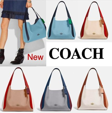 COACH* Hadley Hobo In Colorblock ハドリー ホーボー カラー