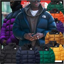 ☆新作☆関税込★THE NORTH FACE★1996 ECO NUPTSE DOWN JACKET