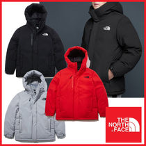 THE NORTH FACE★20-21AW GO EXPLORING DOWN JACKET_NJ1DL71