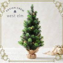 【West Elm】クリスマスの必需品 LED Light-Up Tabletop Tree