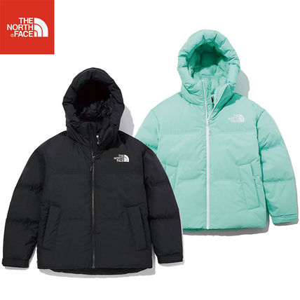 ★THE NORTH FACE★ NJ1DL80 NEW CHENA DOWN JACKET ダウン