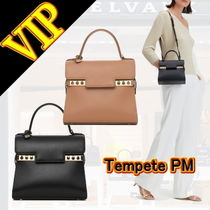 DELVAUX(デルボー) ハンドバッグ ◆◆VIP◆◆  DELVAUX   Tempete PM Calf Joy- 2Way