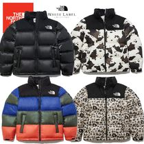 日本未入荷★THE NORTH FACE★NOVELTY NUPTSE DOWN JACKET